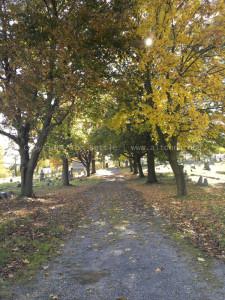 oak-ridge-cemetery-04-altoona-pa