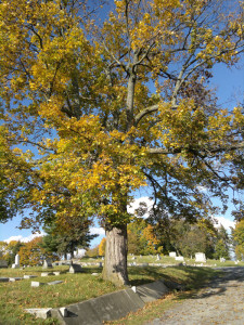 oak-ridge-cemetery-10-altoona-pa